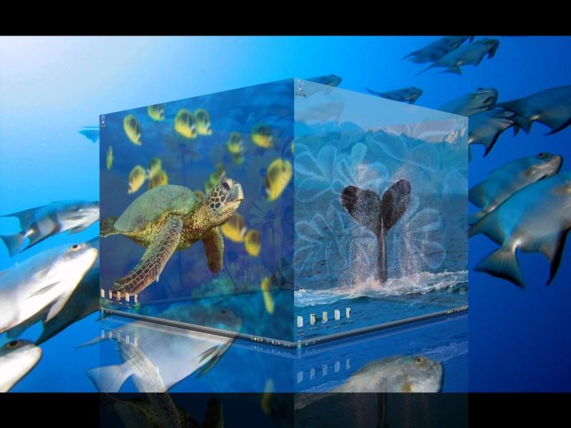 DeskSpace Ekran Görüntüleri - 1
